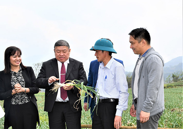 VIETNAMESE FARMERS UNION TOGETHER WITH EMTERPRISES SURVEY THE AGRICULTURE PROJECTS OF TAY BAC
